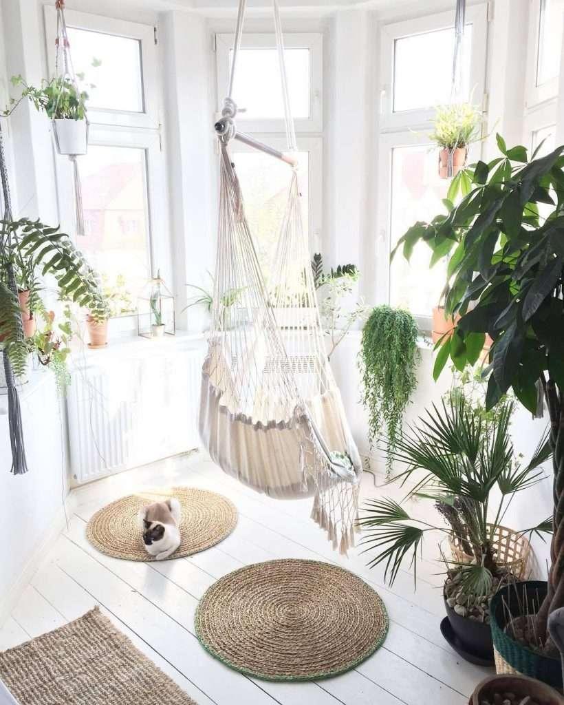amaca da interno in mezzo alle piante