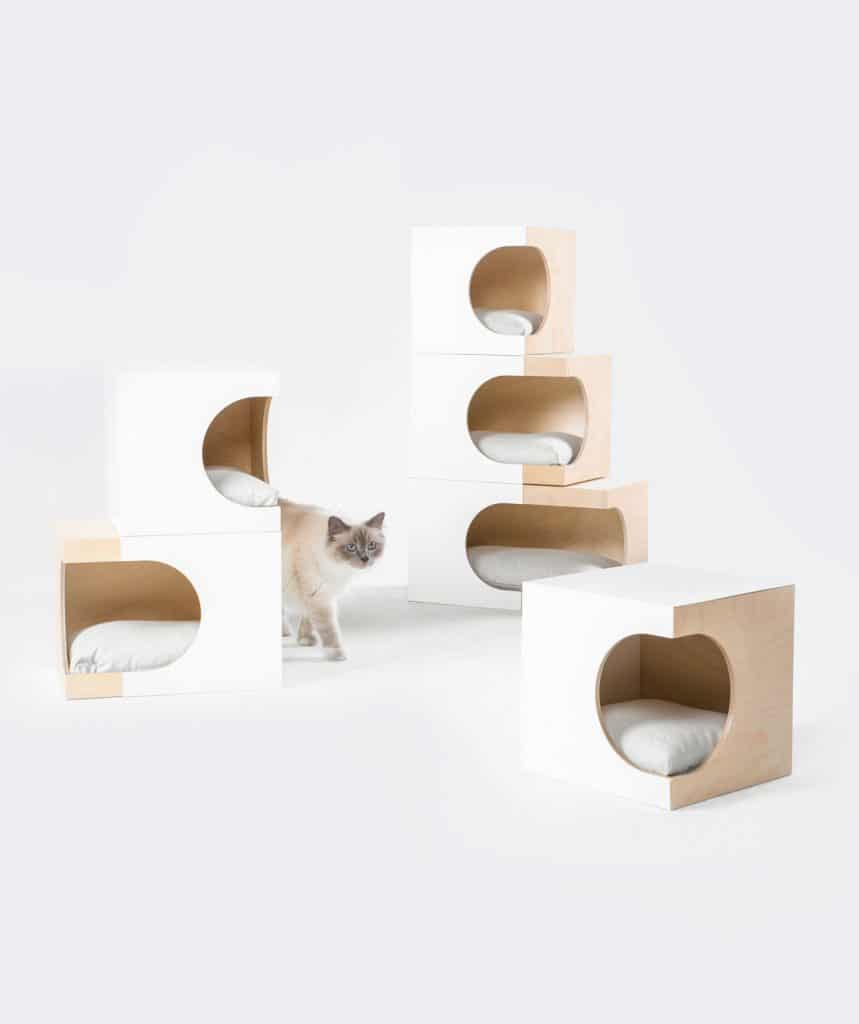 box di design per gatti componibile