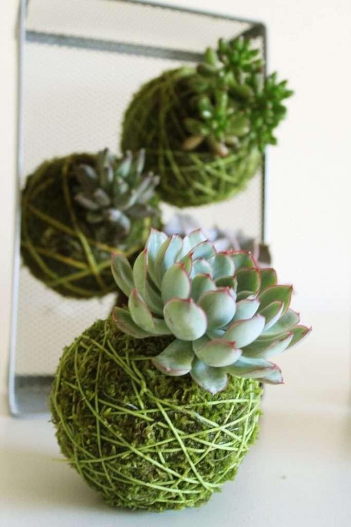 Kokedama idee per giardini sospesi blog fillyourhomewithlove for Giardini idee piante